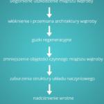 Marskość wątroby – punkt widzenia ultrasonografisty - Portal wymiany wiedzy o ultrasonografii - Eduson