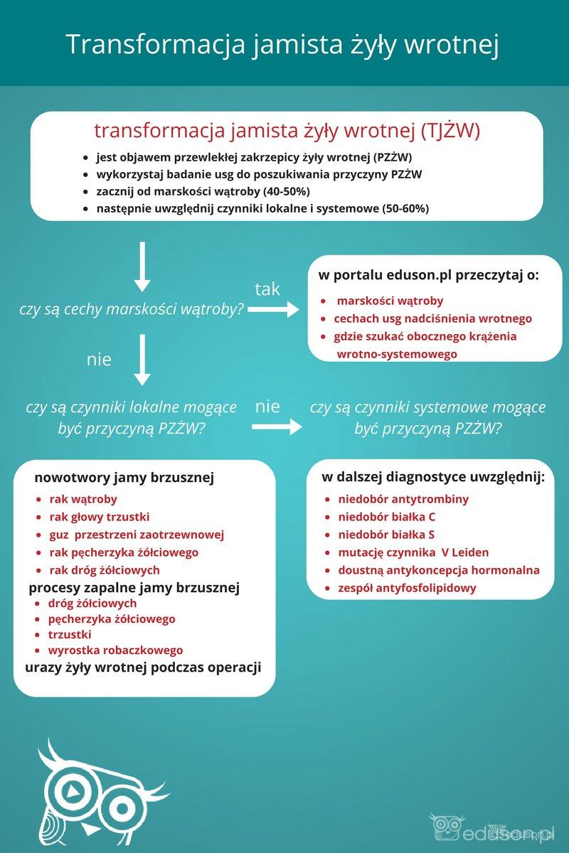 Schemat 2. schemat postępowania, uwzględniający najczęstsze przyczyny TJŻW