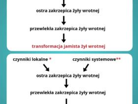 Transformacja jamista żyły wrotnej - Portal wymiany wiedzy o ultrasonografii - Eduson