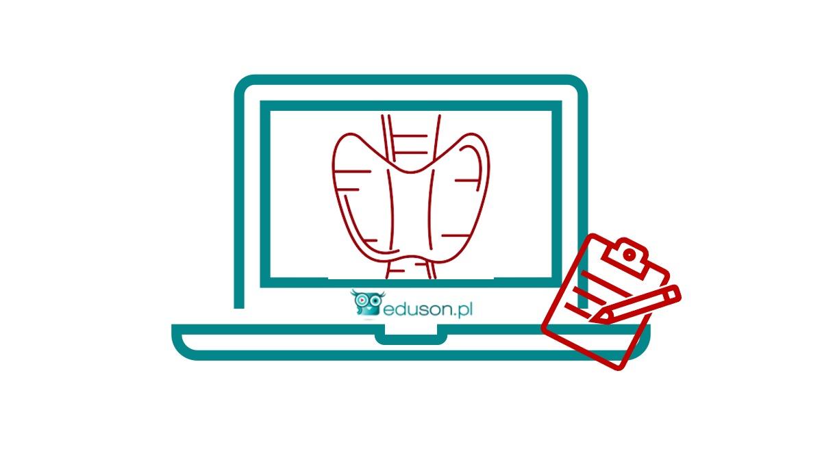 Jesienny Internetowy Kurs Ultrasonografii Tarczycy - Portal wymiany wiedzy o ultrasonografii - Eduson