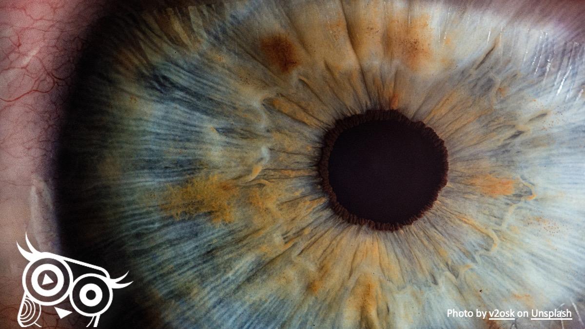 #45 Czego nie widać w usg? - Portal wymiany wiedzy o ultrasonografii - Eduson