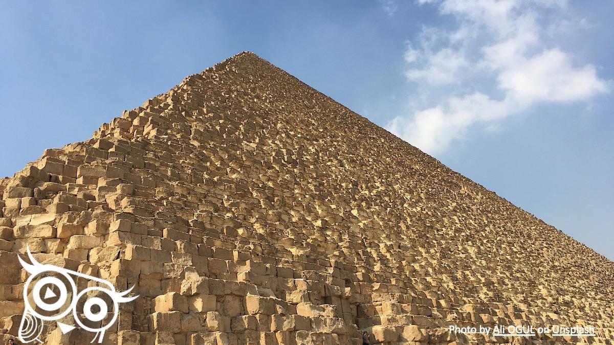 #48 Piramidy nerkowe - Portal wymiany wiedzy o ultrasonografii - Eduson