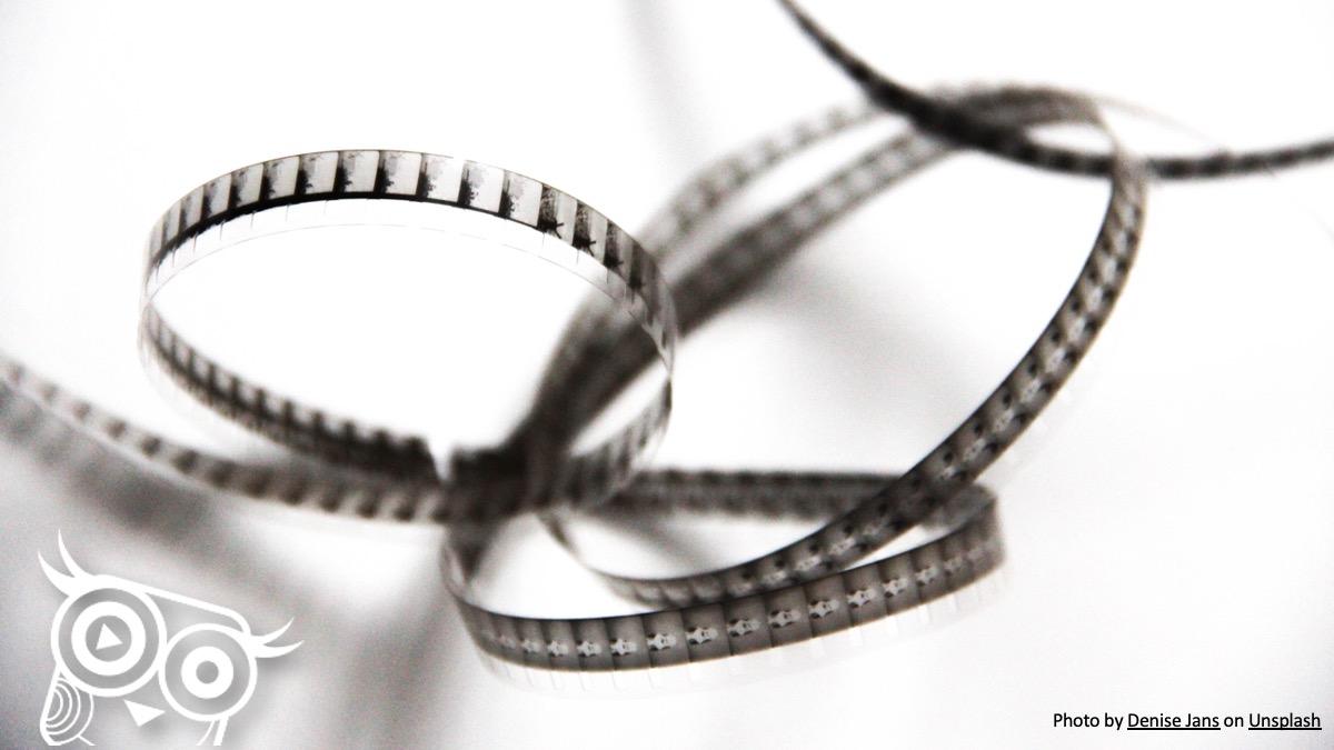 #49 Śledziona - aktorka drugiego planu - Portal wymiany wiedzy o ultrasonografii - Eduson