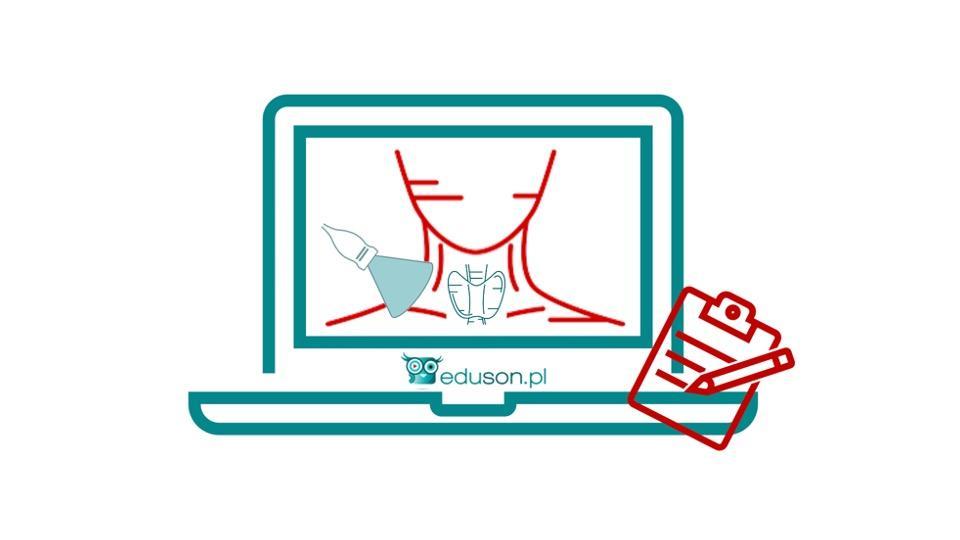 Internetowy Kurs Ultrasonografii Tarczycy i Szyi - 14 punktów PTU - Portal wymiany wiedzy o ultrasonografii - Eduson