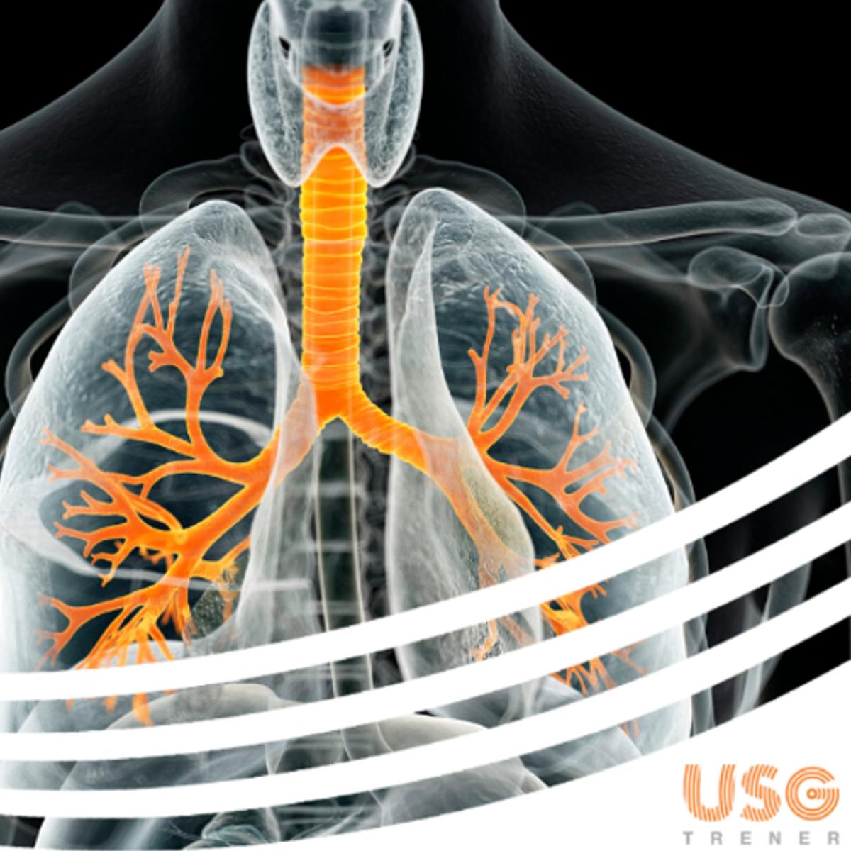 Zapraszamy na Kurs USG Klatki Piersiowej w Lesznie - Portal wymiany wiedzy o ultrasonografii - Eduson